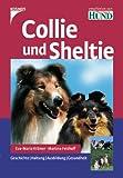 Collie und Sheltie: Geschichte. Haltung. Ausbildung. Gesundheit.