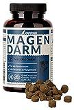 Schnüffelfreunde Magen Darm für Hunde I Unterstützt die Darmflora und natürliche Darmregulierung...