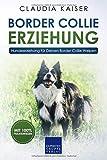 Border Collie Erziehung: Hundeerziehung für Deinen Border Collie Welpen (Border Collie Band, Band...