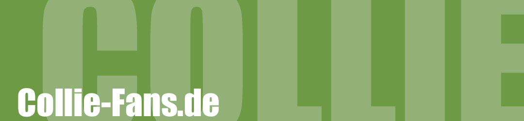 Collie Fans - die Seite für alle, die Collies lieben