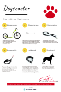 Dogscooter Equipment Infografik
